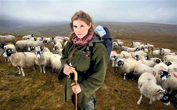 shepherd1_2885291b