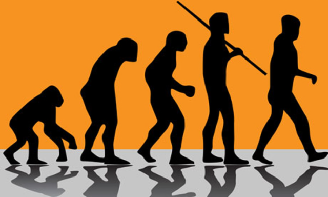 silhouette-evolution-primate-human.png