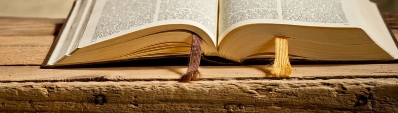 Book Review: How the Bible ActuallyWorks